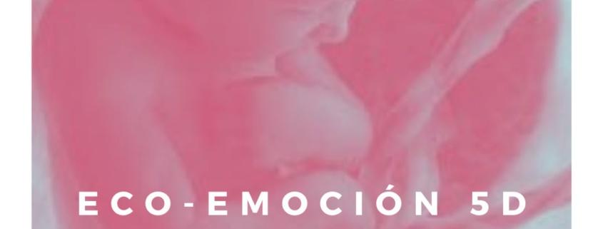 Ecografía 5D control de embarazo IDONA Xàtiva